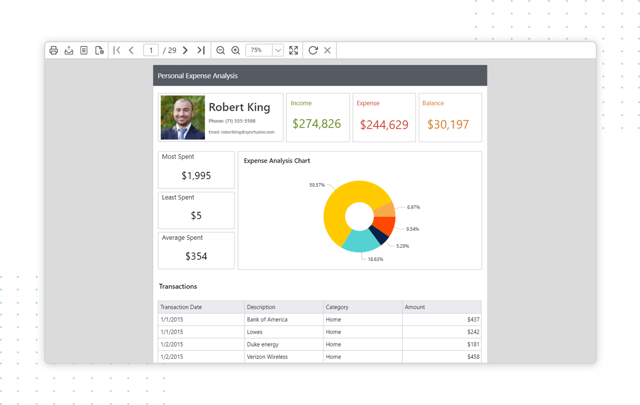 Preview of personal expense report in standalone report designer
